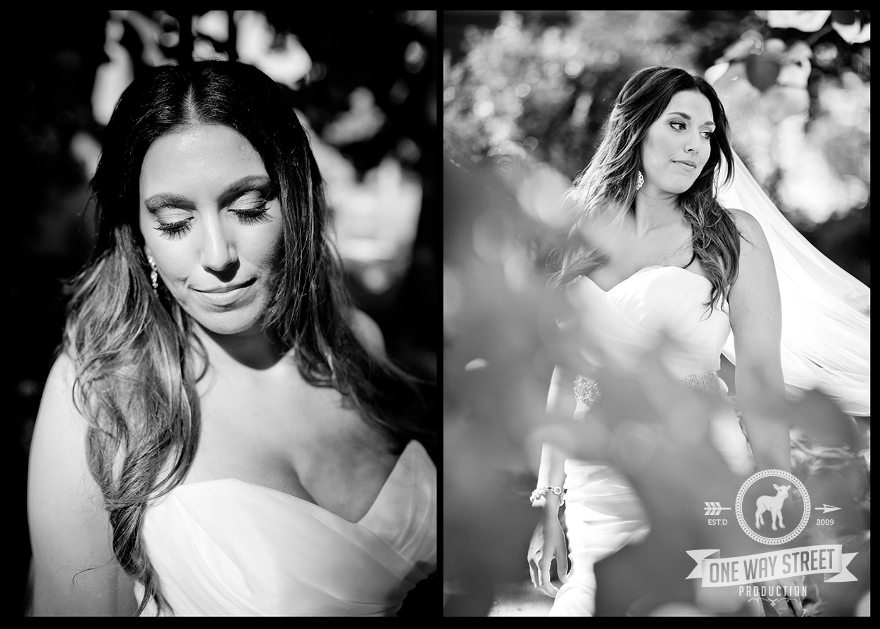 OWSP-Chicago-Wedding-Elegant-Bride-Black-White